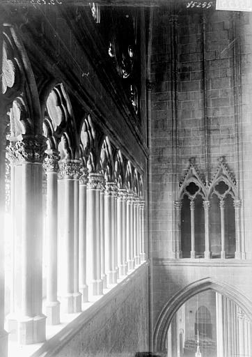 Cathédrale Notre-Dame Triforium, détail, Enlart, Camille (historien),