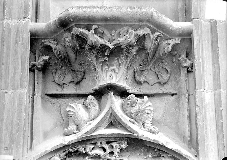 Cathédrale Saint-Etienne Façade ouest : console du soubassement, Doucet ; Baudet (photographe),