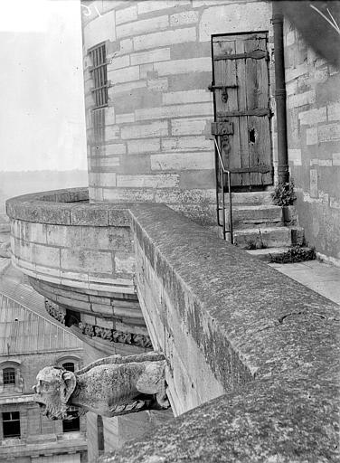 Château Donjon : Chemin de ronde et prote d'entrée de la tour, Vorin,