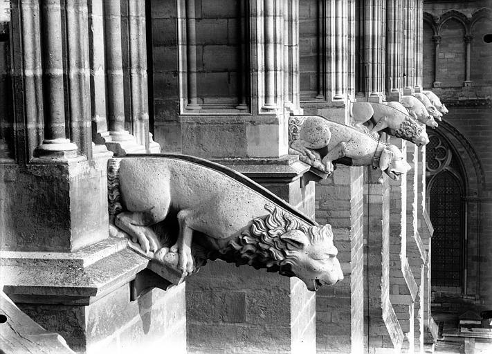 Cathédrale Notre-Dame Gargouilles, façade sud, Lajoie, Abel,