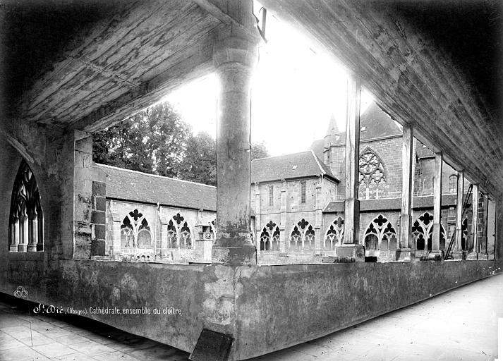 Cathédrale Saint-Dié Cloître : vue d'ensemble prise de l'angle est, Mieusement, Médéric (photographe),