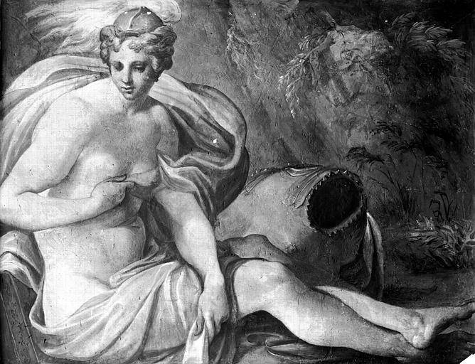 Domaine national, château Peintures murales de la galerie Henri II, Vénus, Service photographique,