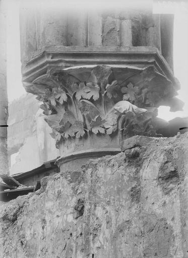 Abbaye Saint-Remi (ancienne) ou ancien Hôtel-Dieu Salle capitulaire, chapiteau, Verneau, G.,