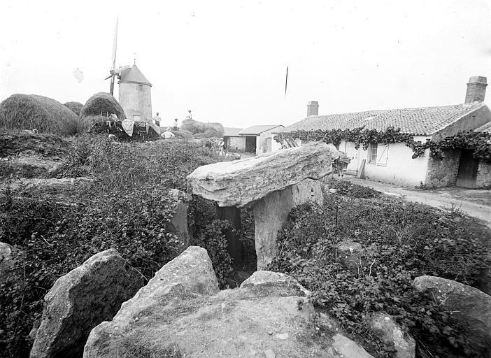 Dolmen sous tumulus du Moulin de la Motte Vue d'ensemble, Mieusement, Médéric (photographe),