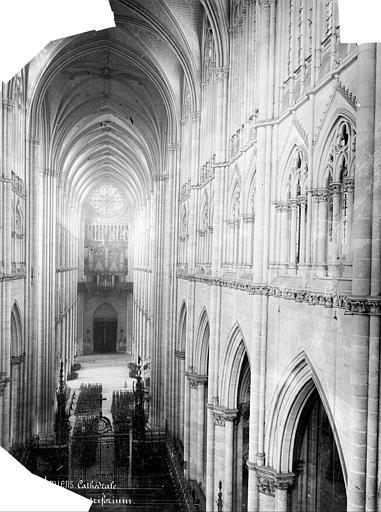 Cathédrale Notre-Dame Vue intérieure de la nef, vers l'entrée, prise du triforium du choeur, Mieusement, Médéric (photographe),