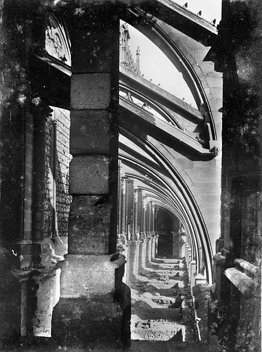 Cathédrale Notre-Dame Façade sud : Arcs-boutants et sommets des voûtes des chapelles de la nef, vus vers l'est, Sainsaulieu, Max (photographe),