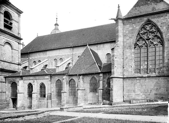 Cathédrale Saint-Dié Façade sud, Mieusement, Médéric (photographe),