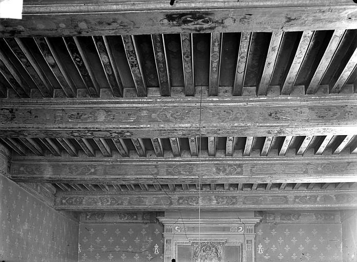 Palais de Justice Salle des avocats : plafond, Gossin (photographe),