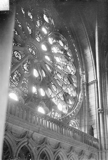 Cathédrale Notre-Dame Vitrail, grande rose, Sainsaulieu, Max (photographe),