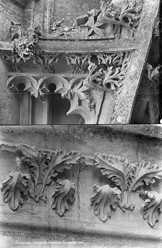 Cathédrale Notre-Dame Transept nord : détail de la décoration, Mieusement, Médéric (photographe),