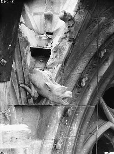 Cathédrale Notre-Dame Tour sud, gargouille, Lajoie, Abel,