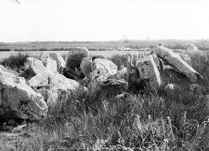 Dolmen dit des Hautes Folies Vue d'ensemble, Mieusement, Médéric (photographe),
