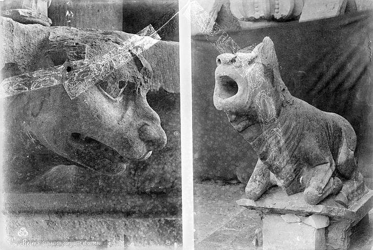 Cathédrale Notre-Dame Transept sud : détail de figures sculptées (gargouille et corbeau), Mieusement, Médéric (photographe),