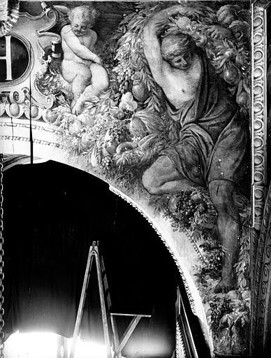 Domaine national, château Peintures murales de la galerie Henri II, écoinçon de droite, Service photographique,