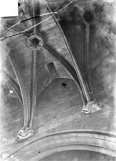 Château Donjon : Voûtes, Vorin,