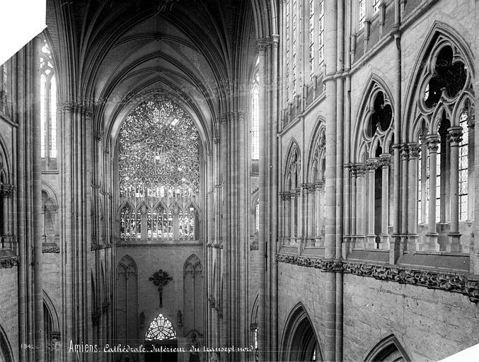 Cathédrale Notre-Dame Vue intérieure du transept nord, au niveau du triforium, Mieusement, Médéric (photographe),