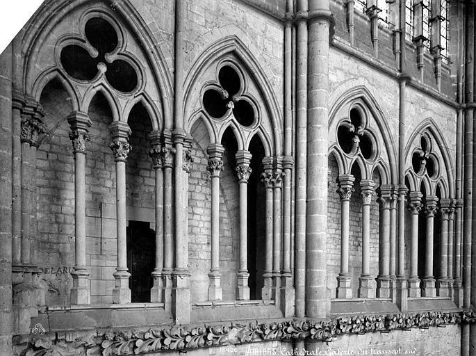 Cathédrale Notre-Dame Vue intérieure du transept sud : arcades de la tribune, Mieusement, Médéric (photographe),