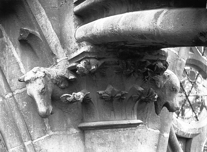 Cathédrale Notre-Dame Chapiteau, feuillages et animaux, contrefort de la nef, façade sud, Lajoie, Abel,
